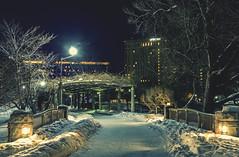 Nakajima park, Sapporo (Bareru) Tags: park winter snow japan night sapporo candles nakajima