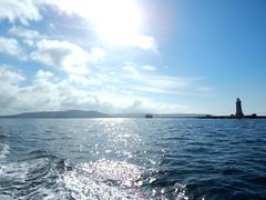 Plymouth-201506-51-PassingTheBreakwater (Tony J Gilbert) Tags: macro marine underwater plymouth diving scylla jameseaganlayne nikond300 handdeeps wwwdivingplymouthcom ceeking hilseapointrocks