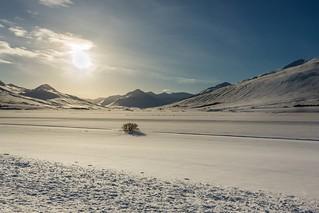 Svarfadardalur Iceland