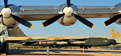 USAF generations - Boeing B-52D Stratofortress under Convair B-36J wing - Pima Air & Space Museum, Tucson, Arizona (edk7) Tags: arizona usa plane airplane us tucson aircraft aviation military sac bomber strategic usaf coldwar unitedstatesairforce nikond3200 strategicaircommand longrange pimaairspacemuseum 2013 subsonic pimacounty arizonaaerospacefoundation boeingb52dstratofortress 550067 edk7 8jet prattwhitneyj57p19wturbojet12100lbf
