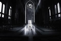 Cathédrale Notre-Dame de la Treille, Lille (Newlandator) Tags: france blackwhite lille 1740mm canon6d cathédralenotredamedelatreille