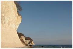 Schwne und ein Kormoran (Caora) Tags: coast buchenwald nikon balticsea rgen ostsee frhling kreidefelsen d7100