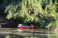 danube (cyberjani) Tags: water river boat serbia belgrade danube balkan