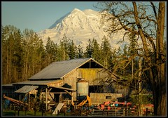 Farm Stuff (Ernie Misner) Tags: mountain barn washington nikon mountrainier rainier nik grahm d800 lightroom hoarder capturenx2 grahmwashington erniemisner