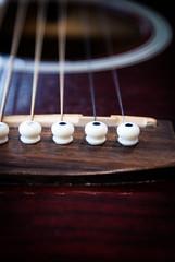violin or guitar (pamelaadam) Tags: summer june digital visions scotland meetup fotolog aberdeen 2014 thebiggestgroup