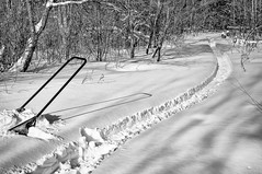 B&W Path (Anymouse02) Tags: winter white black art landscape gradation tonal