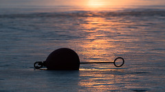 Buoy (jarnasen) Tags: morning winter copyright sunlight ice nature water backlight sunrise reflections march frozen nikon dof sweden outdoor tripod silhouettes sverige tamron buoy telezoom boj d810 150600mm tamronsp150600mm jarnasen wwwfacebookcomjarnasenphotography