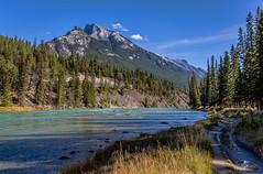River Walk (NoVice87) Tags: mountain canada river alberta banff