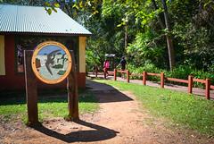 Parque Nacional Iguazu (Jorgelina Dromedari) Tags: naturaleza argentina brasil waterfall natural selva waterfalls cataratas iguazu misiones parquenacional cataratasdeliguazu parquenacionaliguazu