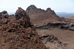 Piles of Lava and a Cactus _3301 (hkoons) Tags: ocean sea history latinamerica southamerica birds america landscape island lava islands ecuador marine pacific country darwin historic galapagos spanish pacificocean hispanic saltwater equator iquana naturalselection galapagosprovince new7wonders galapagosnationalpark galapagosmarinereserve galpagos nazcaplate galapagostriplejunction bartolame