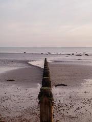 Bognor NovemberPB165909_02 (tony.rummery) Tags: sunset england seascape beach sussex unitedkingdom perspective olympus gb southcoast groyne bognor englishchannel bognorregis breakwater mft microfourthirds epm1