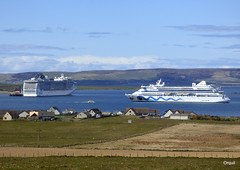 Two Cruise Ships In Kirkwall Bay (orquil) Tags: uk greatbritain cruise blue houses sea sky sunshine clouds islands scotland seaside spring big interesting orkney ships shoreline sunny calm april fields visitors quirky liner bigeye anchored hotlips aidavita berthed orcades kirkwallbay mscsplendida hatstonpier shiplifeboat