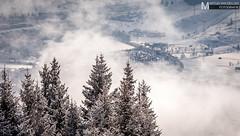 Perspective (Martijn ) Tags: trees ski clouds see am bomen perspective wolken lucht wintersport zell wwwmartijnvandellennl martijnvandellenfotografie