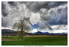 si prepara un temporale (Giorgio Serodine) Tags: alberi montagne canon nuvole colore erba cielo collina friuli temporale orizzonte allaperto