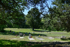 DSC_0302.jpg (SouthernPhotos@outlook.com) Tags: cemetery us unitedstates alabama sumtercounty larrybell browncemetery emelle larebel larebell