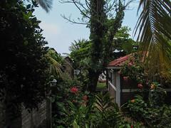 """Playa Santo Domingo: notre logement <a style=""""margin-left:10px; font-size:0.8em;"""" href=""""http://www.flickr.com/photos/127723101@N04/26490761650/"""" target=""""_blank"""">@flickr</a>"""