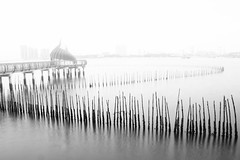 Fenced (Johan_Lithun) Tags: sea blackandwhite white reflection water fog fence blackwhite singapore highkey seascap