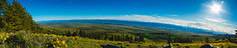 Mountain Panorama (JustinMullenPhotography) Tags: blue trees sky panorama sun mountain tree nature beautiful grass landscape hiking wilderness