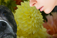 What Do You Smell (swong95765) Tags: flowers woman dog nose emotion bokeh lips smell sniff scent fragrance