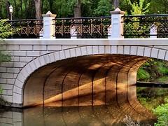 Light in Forest Park ~ #ForestPark #bridges #light (Ben Moeller-Gaa) Tags: light bridges forestpark