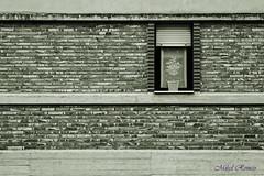 Lehio itxiak/ventanas cerradas (mromeoruiz.wordpress.com) Tags: street streetphotography invierno nafarroa barasoain negua mundua herriak zonamedia cosasdelacalle kaletik kalekogauzak