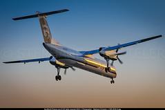 [LAX.2014] #Horizon.Air #QX #Alaska.Airlines #AS #Bombardier #Dash.8 #Q400 #N417QX #awp (CHRISTELER / AeroWorldpictures Team) Tags: california ca sunset usa history alaska airport cabin nikon air horizon airplanes flight first landing engines planes lax nikkor airlines reg lr lenses aircrafts qx losangels alaskaairlines bombardier pwc 2x livery planespotting config delivered q400 18135 klax horizonair y74 n417qx dhc8402 qxe 09jul2004 cfcsg d300s pw150a cn4086 02jan2004