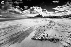 Castle Bamburgh, Northumberland (Silent Eagle  Photography) Tags: sea sky bw plants cloud seascape castle beach monochrome canon yahoo google silent eagle wind outdoor northumberland sep northeast flipboard bamburghcastle canoneos5dmarkiii silenteaglephotography silenteagle09