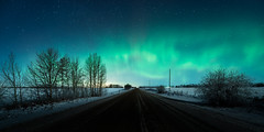 Alberta Aurora (Sandra Herber) Tags: winter snow canada night stars alberta northernlights auroraborealis
