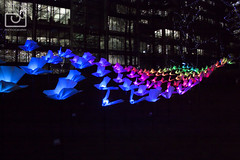 'On the wings of freedom' by Aether & Hemera (#1) (VeRoNiK@ GR) Tags: winter light colour london beautiful festival night photography january canarywharf winterlights 2016 isleofdogs