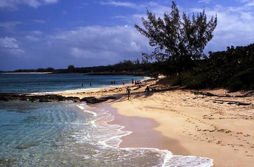 "Bahamas 1988 (307) Rose Island • <a style=""font-size:0.8em;"" href=""http://www.flickr.com/photos/69570948@N04/24087171272/"" target=""_blank"">Auf Flickr ansehen</a>"