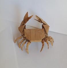 Crab (orig4mi.) Tags: paper origami crab folding