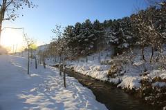 Çayırova'dan Kar Manzaraları 31