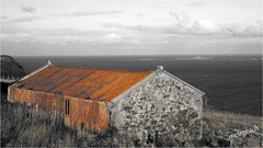 meirgeach (Senaid) Tags: skye ferry barn scotland highlands nikon rust isleofskye rusty scottish minch gillen waternish d600 ascribislands dubhard meirgeach