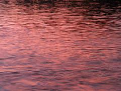 Pink sunset (Alveart) Tags: latinamerica southamerica colombia meta llanos suramerica lamacarena lationamerica sierradelamacarena caocristales liquidrainbow canocristales alveart luisalveart macareniaclavigera caocirstalitos riomasbonitodelmundo riodelos5colores parquenacionalnaturalsierradelamacarenacanocristales