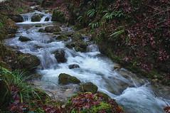 der Bach (welenna) Tags: winter switzerland berge bach jura schlucht teufelsschlucht