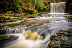 Nant Mill Wood. Feb 2016-28-9.jpg (revpdwilson) Tags: water wales landscape waterfall naturallight slowshutterspeed northwales nikon28300mmvr nikond750 lightroom6 nantmillwood