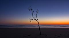 (http://martographyau.blogspot.com.au/) Tags: ocean sea sky seascape colour beach water sunrise nikon waves australia tokina beaches