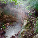 Boiling Mud Pool (Morne Trois Pitons National Park, Dominica)