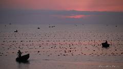 Good morning Vietnam (DulichVietnam360) Tags: morning sea mer beach nature sunrise boat fishing vietnam bateau plage matin bin fishfarming sng thuynthng thng bnhminh mintrung dulichvietnam360 thuyn nhc ninhch tranthaihoa phanrangthpchm lngnuic