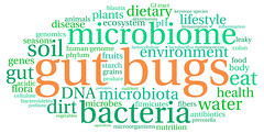 Gut Bugs Word Cloud (chloearchard) Tags: food plants water fruits vegetables animals gut flora seasons body lifestyle bugs medical soil dirt eat health human dna environment species keystone produce grains diet agriculture ph acidic bacteria genes gi disease fibers colon ecosystem fermentation nutrition microbes tract microorganisms leaky starch inflammation antibiotics genomics cellulose genome pathogens phylum nutrient microbiota dietary prebiotic lactobacillus hemicellulose microbiome firmicutes bacteroidetes akkermansia blautia prevotella ruminococcus