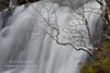 Birch Falls (Shuggie!!) Tags: trees water landscape scotland waterfall highlands williams heather karl glencoe birch zenfolio karlwilliams