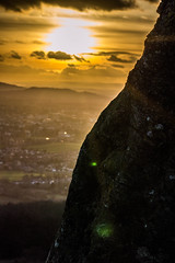 Light On The Bark - Cleeve Hill, Gloucestershire. (Jeremiah Huxley Productions) Tags: england gloucestershire cheltenham cleevehill