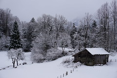 alte Scheune / old barn (Batrice...) Tags: schnee winter snow mountains barn forest schweiz berge wald berneroberland winterlandschaft scheune switherland kantonbern