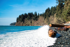 Sandcut Beach Logs (Per@vicbcca (Thanks for over 1Mill Views!)) Tags: canada beach surf waves britishcolumbia sony logs victoria vancouverisland driftwood sandcutbeach dscrx100m4