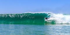 NBSurf_DY_2016_01_31_786.jpg (Neil Banek) Tags: surf sydney freshwater deewhy northernbeaches