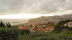 Funchal - Madeira Island (konceptsketcher) Tags: city travel portugal photography madeira funchal madeiraisland canon70d konceptsketcher