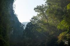 _DSC3571 (Jorge De Silva R) Tags: nature rio de la photo adventure venta caon chiapasmexico fotografiadenaturaleza