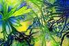 Leap into Spring by Lesley Whelan (Heaven`s Gate (John)) Tags: uk blue plants green art landscape leaf spring artist branch graphic british coventry leap johndalkin heavensgatejohn leapintospring lesleywhelan