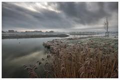Sunset Waterakkers_002 (cees van gastel) Tags: nature water skyline clouds landscape frozen skies bevroren outdoor horizon natuur wolken breda riet landschap luchten sigma1020mm rijp einder ceesvangastel canoneos40d waterdonken waterakkers