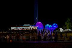 Enlighten 2016 (tenich) Tags: lighting festival lights jellyfish crowd australia images event canberra oldparliamenthouse enlighten parliamnenthouse enlighten2016